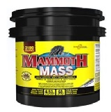 Mammoth Nutrition Mass,  Strawberry  10 lb