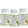 Health first Garcinia Cambogia 70% HCA (Pack of 3),  90 veggie capsule(s)