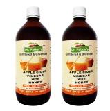 Dr. Patkar's Apple Cider Vinegar (Pack Of 2),  300 Ml  Honey