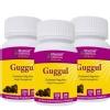 Bhumija Guggul - Pack of 3, 60 capsules