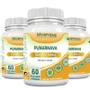 Morpheme Remedies Punarnava (500 mg) Pack of 3,  60 capsules