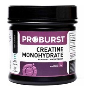 Proburst Creatine Monohydrate,  Unflavoured  0.66 lb