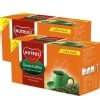 Nutrus Green Coffee Punch - Pack of 2,  20 sachets/pack