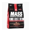 Elite Labs USA Mass Muscle Gainer,  10 lb  Double Rich Chocolate