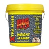 Big Flex Weight Gainer,  6.6 lb  Mocha