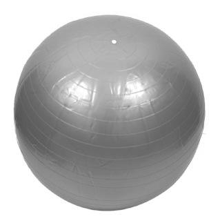 Lifeline Massage Gym Ball,  Silver  75 cm