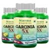 Morpheme Remedies Garcinia 5X (Pack of 3),  60 capsules